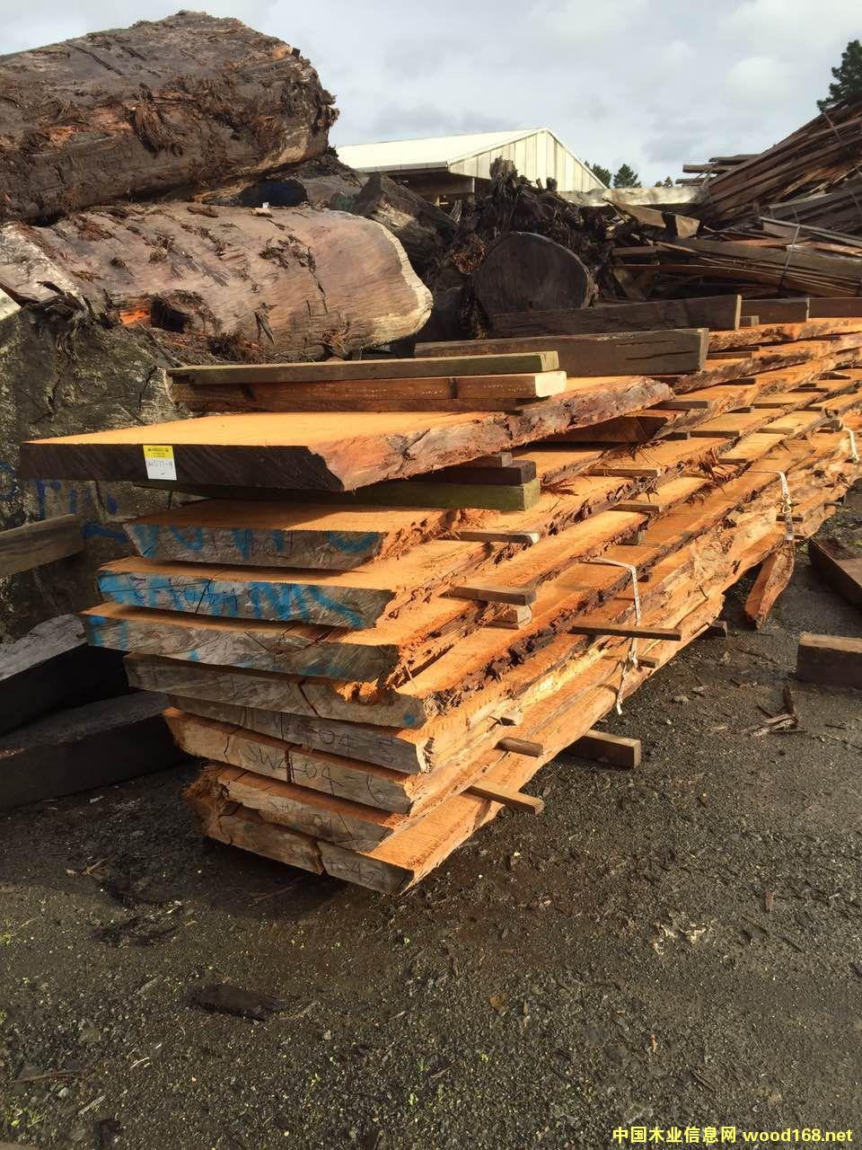 新西兰五万年阴沉木原木大板