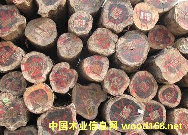 铁木豆原木