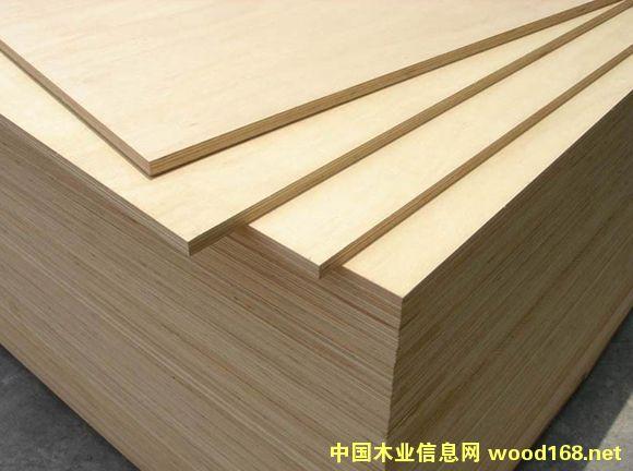 杨木胶合板的详细介绍