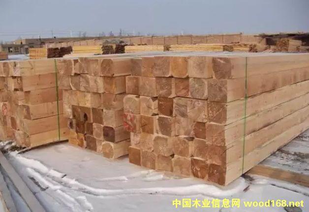 新疆阿拉山口顺森木业:专注俄罗斯木材15年