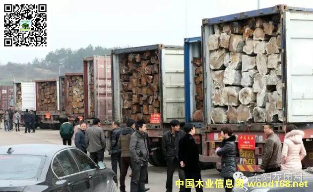 东阳花园原木市场是国内最大名贵木材交易集散地