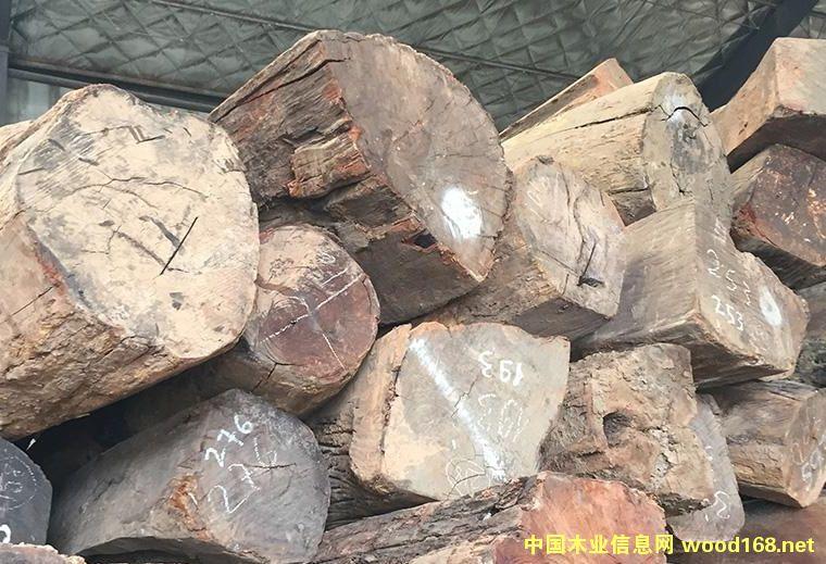 上海木材市场名贵红木行情分析