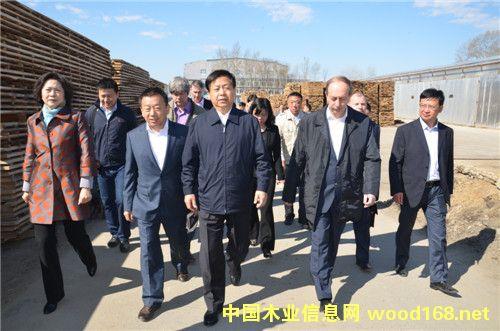 黑龙江省委书记王宪魁视察俄罗斯龙跃林业经贸合作区