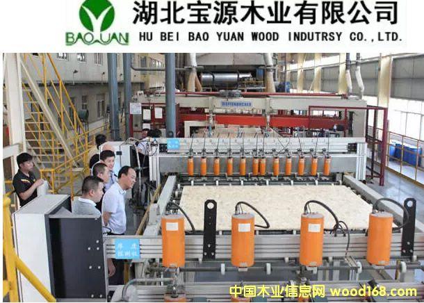 最具绿色价值人造板品牌:湖北宝源木业