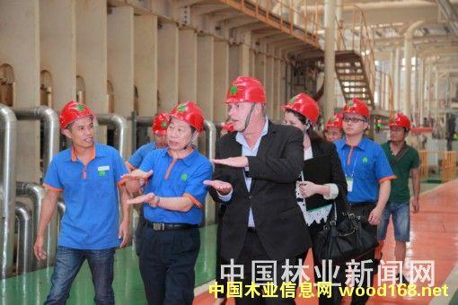 丰林集团中密度纤维板连续压机生产线