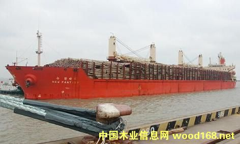 新西兰进口原木连续三年超过俄罗斯成中国原木最大供应地
