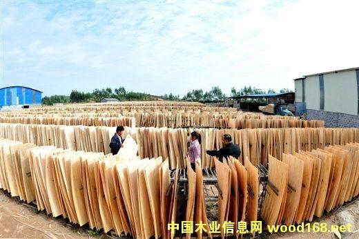 广西灵山县武利木业产业园产品远销欧美市场