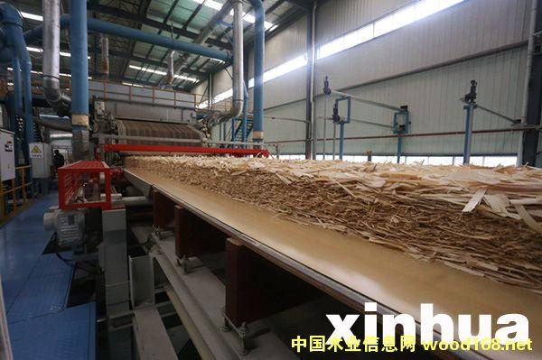 湖北康欣新材COSB高强度定向结构板项目生产线