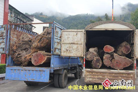 云南怒江片马边境检查站查获两起跨境走私木材案