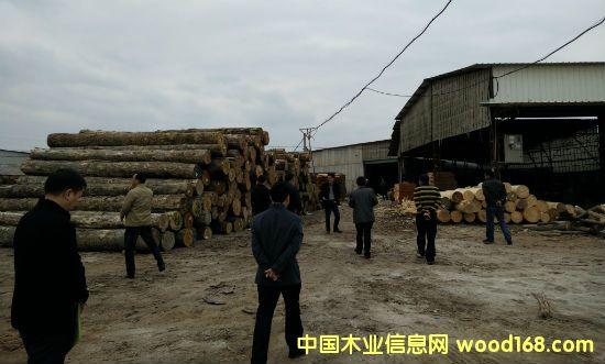 龙海颜厝镇加强对胶合板行业重点区域的排查整治