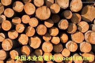 拉脱维亚木材企业亮相第五届世界木材与木制品贸易大会