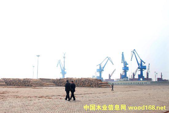 林业国际投资贸易促进会座谈会在镇江召开