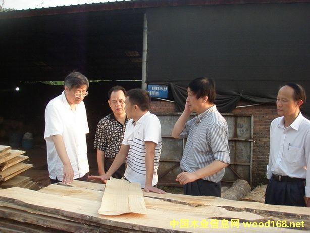 辐照技术应用于木材改性 微塑化让速生材变红木