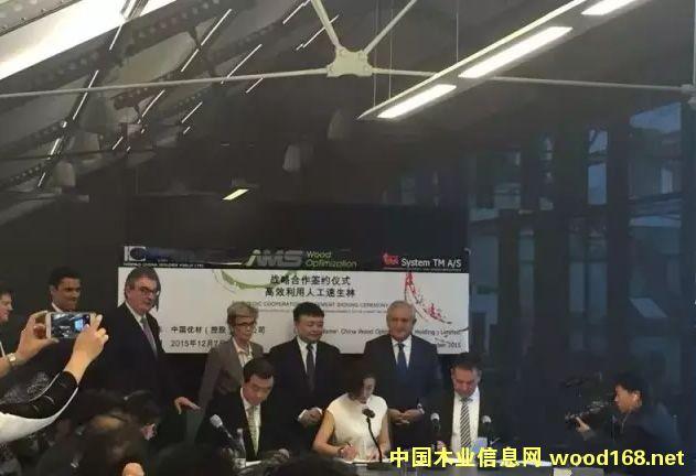 """中国优材与金田豪迈木业机械签订""""高效利用人工速生林""""合作协议"""