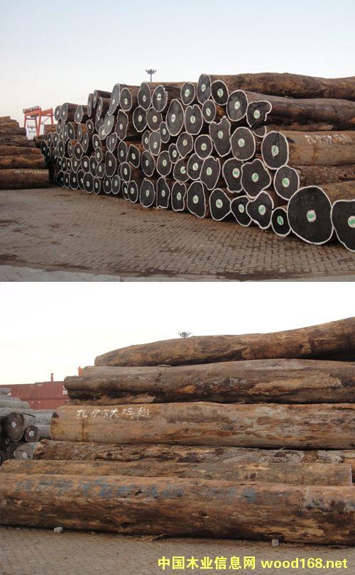 温州木材集团-非洲崖豆木