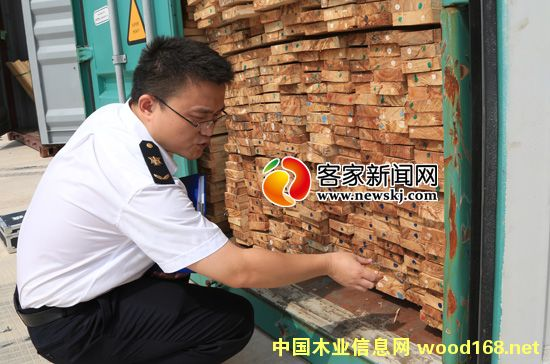 赣州进境木材国检监管区筑起生态安全屏障