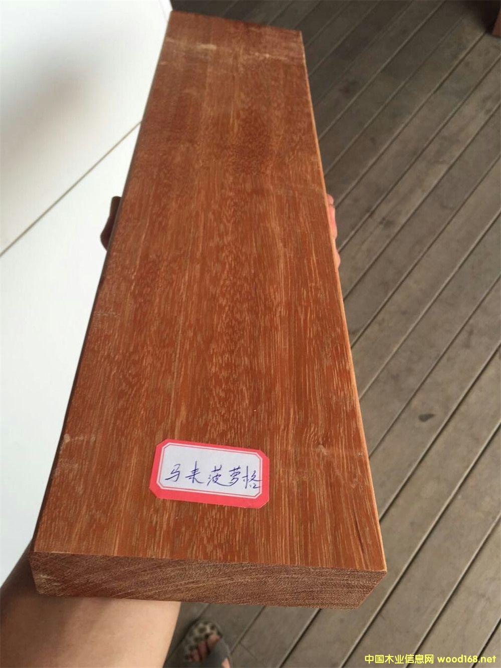 中国最大的木材交易中心 东莞市鱼珠木材加工交易中心 中国木业资讯中心
