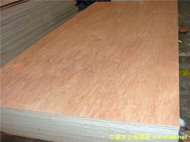 Bintangor Plywood 4