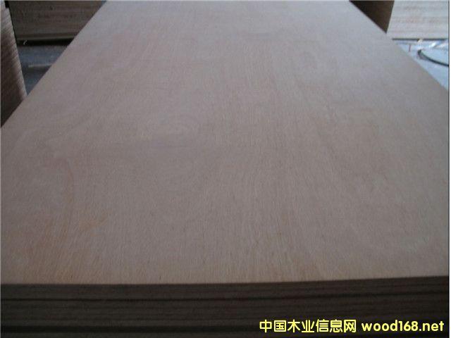 Bintangor Plywood 6