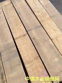 俄罗斯柞木干燥板材