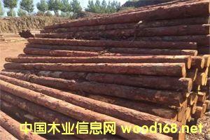 落叶松檩条、坑木、加工材