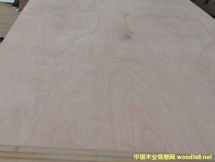 多层板、加长多层板,家具级专用多层板,木饰面专用胶合板