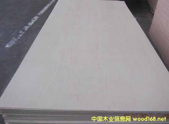 全杨木多层胶合板