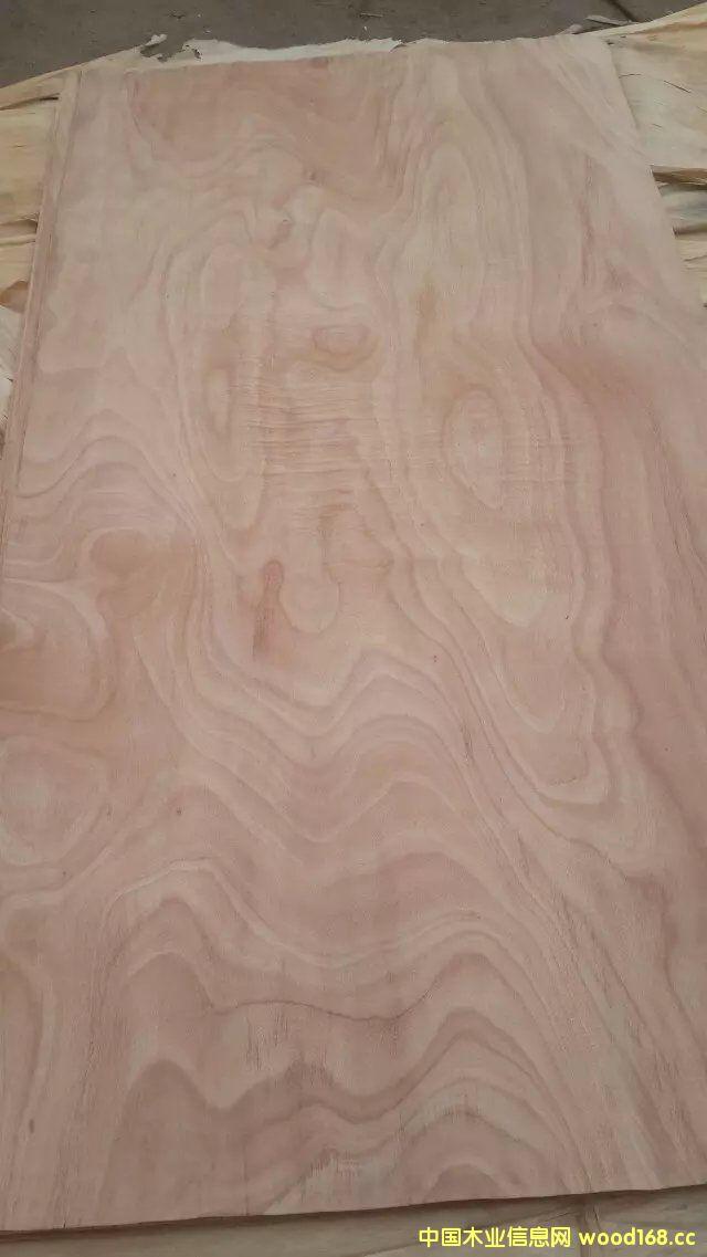 桃花芯木皮的详细介绍