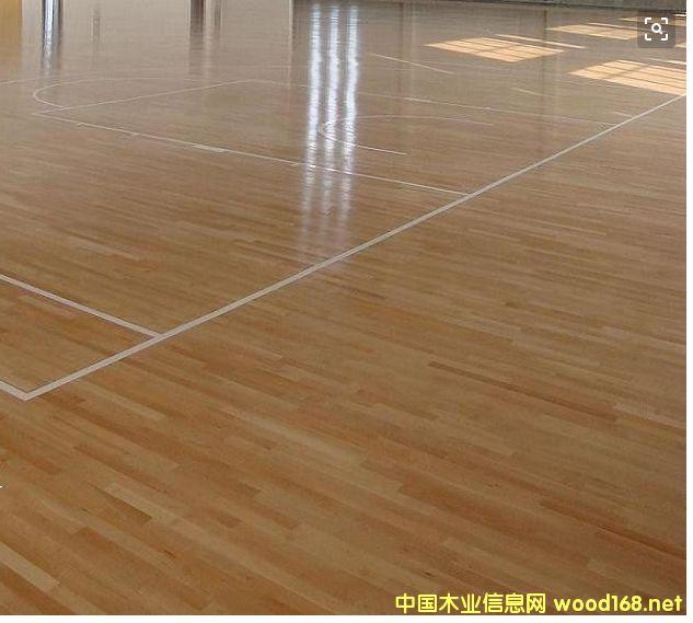 枫木体育地板的详细介绍