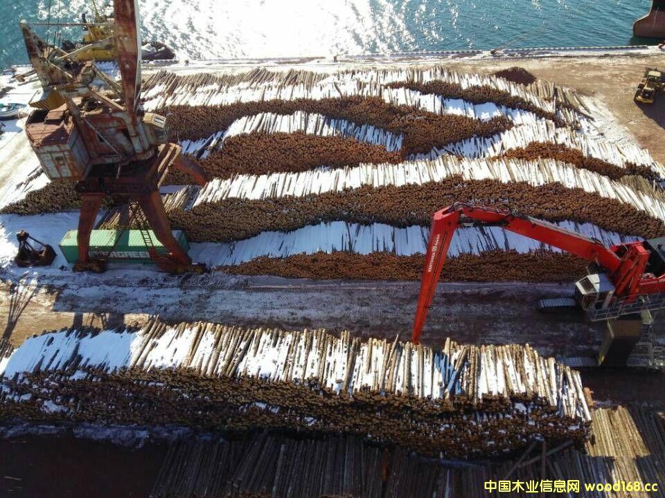 俄木材港口的详细介绍