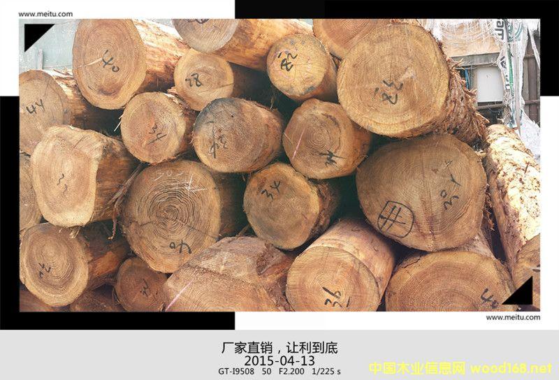 日本柳杉原木板材木方