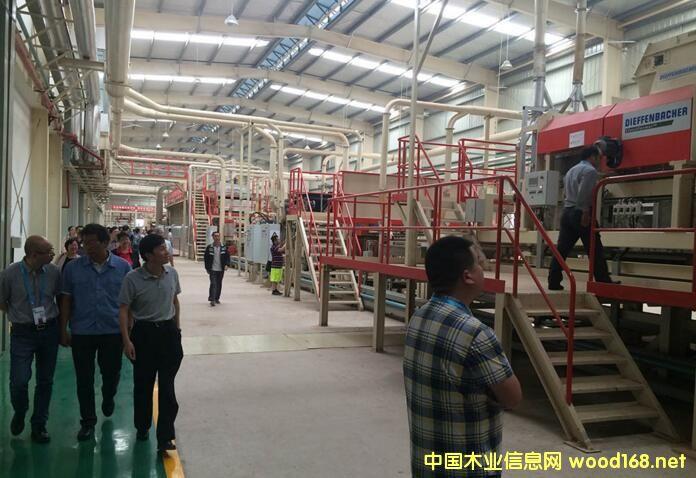 德国人造板生产线制造商迪芬巴赫全球市场动态