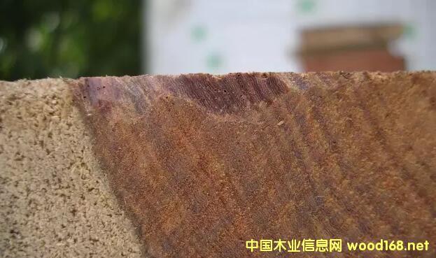 刺猬紫檀木材--高清纹理