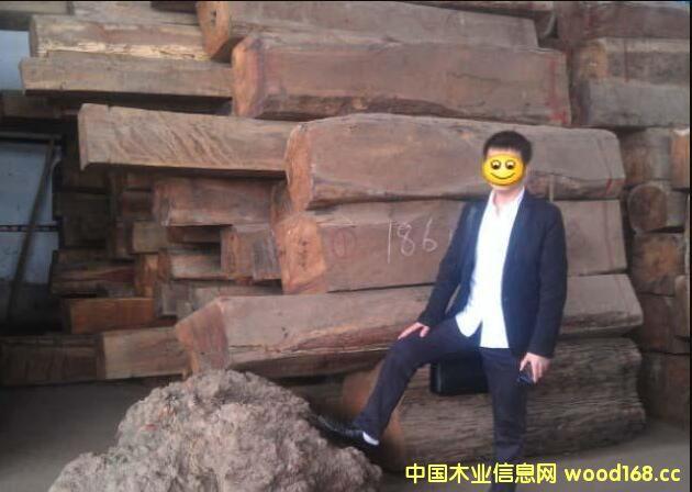 宁波口岸木材进口量价飙升 非洲材进口增长24倍!