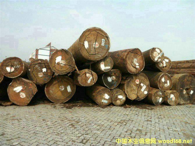张家港木材市场行情分析:所罗门材占据出库入库第一位置
