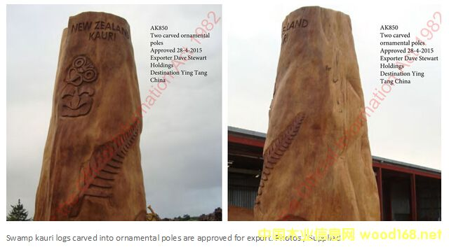 新西兰贝壳杉雕刻而成的毛利木雕作品