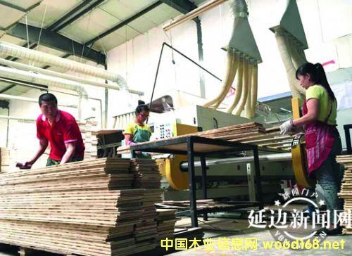 敦化森泰木业靠科技创新赢欧美市场