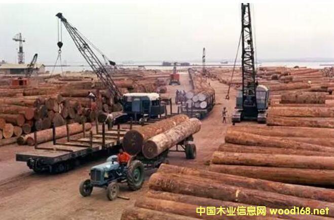 红木原产国封关,价格暴涨40%且严重断货!大红酸枝论斤称!