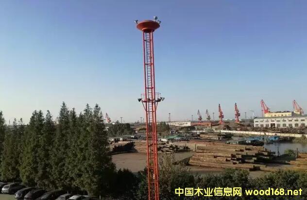 张家港原木市场