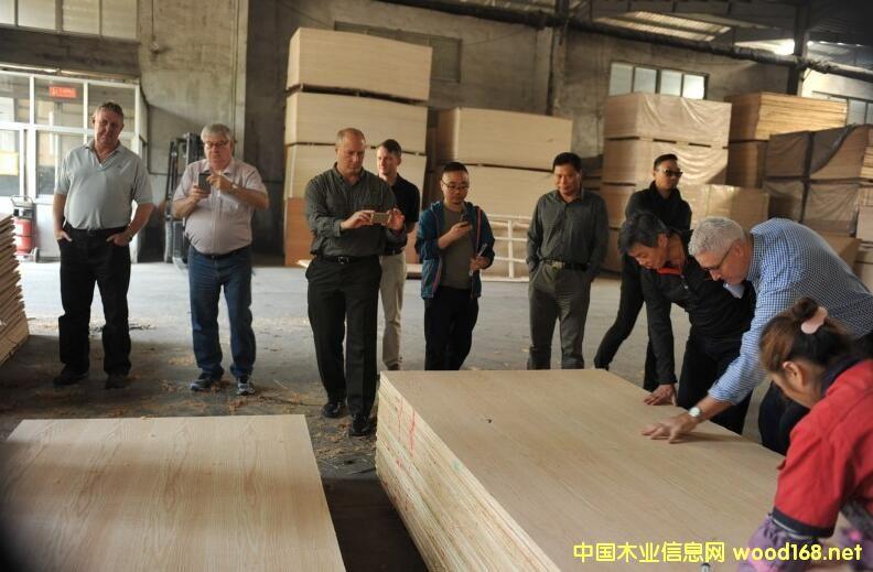 欧洲采购代表团参观临沂大华木业