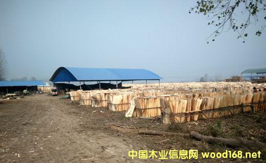 河南商水小型板材厂亟待清理整顿