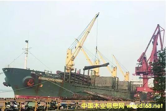 """万蓬集团""""新加坡精神""""木材船8000余立方米原木到张家港"""