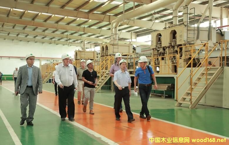 新西兰、澳大利亚、马来西亚木材行业考察团到丰林木业