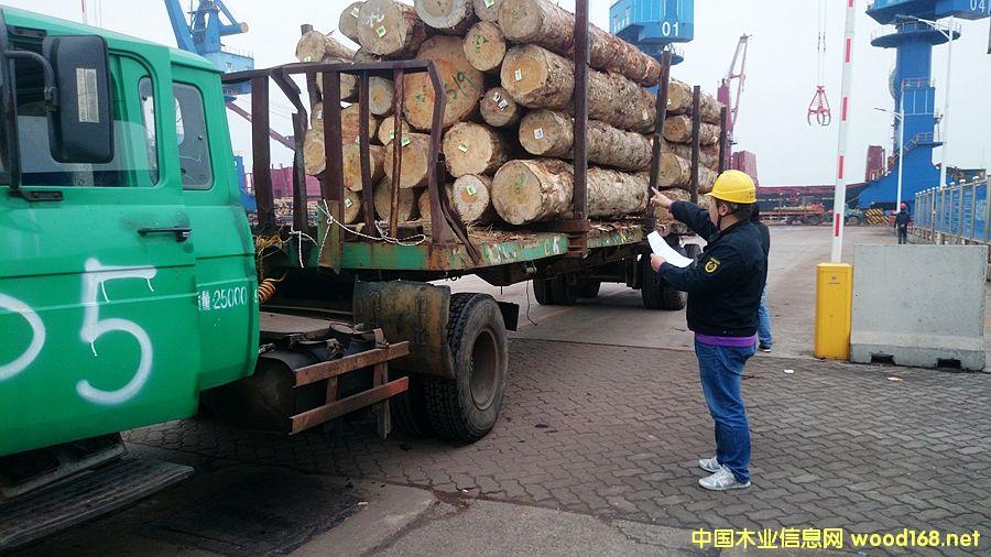 新民洲港:未来中国木材产业第一港和国家级原木定价中心