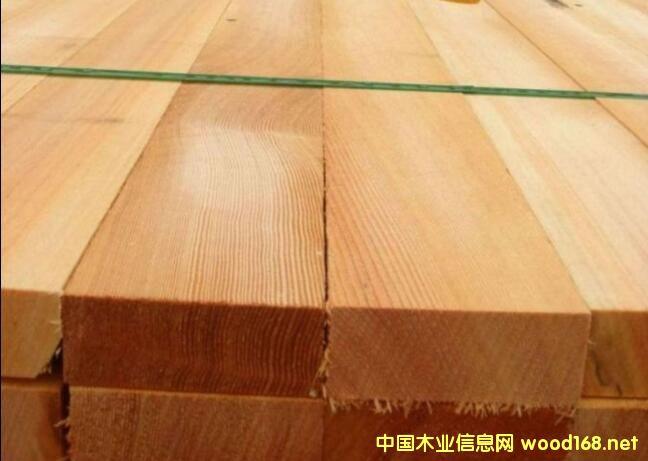 二连浩特口岸一周木材到货及价格通报
