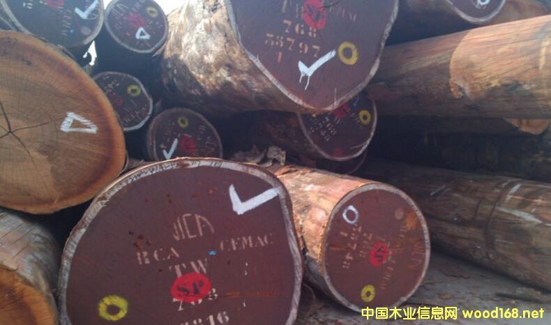 非洲木材--沙比利原木