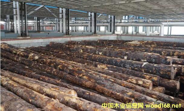 岚桥港――山东省第一家木材检验检疫处理区正式启用