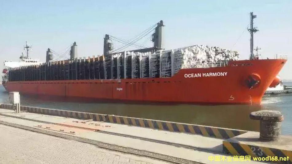 曹妃甸文丰木材码头迎来加拿大两艘原木船