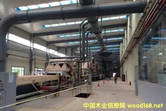 广西都庞岭木业年产15万立方米刨花板项目竣工投产