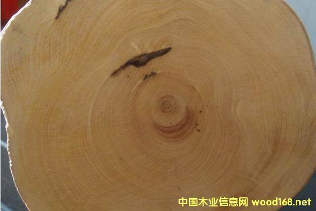 巴新木材手册--巴新材中文和英文名对照